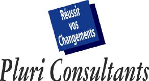 Pluri Consultants Romania 1